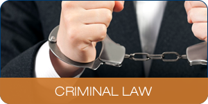 Areas Of Practice - Criminal Law
